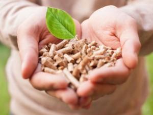 pellet-biologico